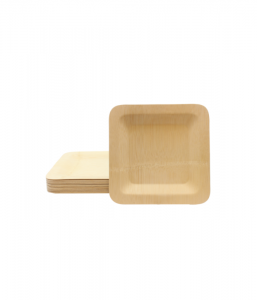 Disposable Square Plates-25.5 x 25.5cm